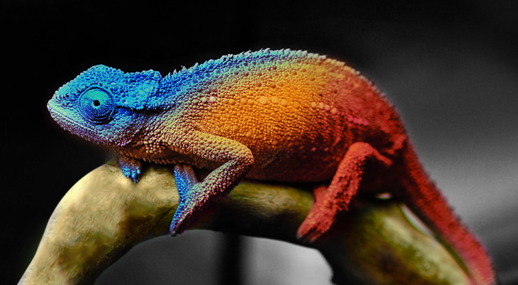 Biomimetička mimikrija