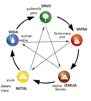 Meridijani energetski putevi u telu kruženje energije
