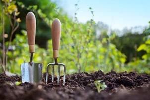 Meditacija radu bašti