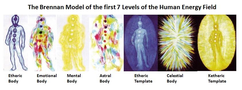 Aura sedam tela