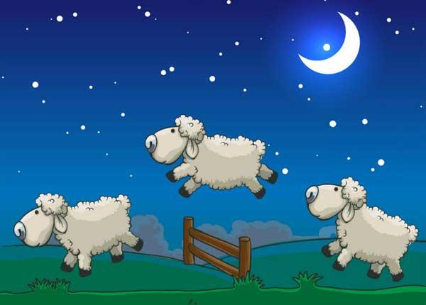 Nesanica, ovce