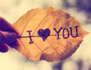 ljubav je