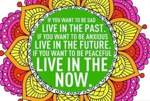 Reiki principi život