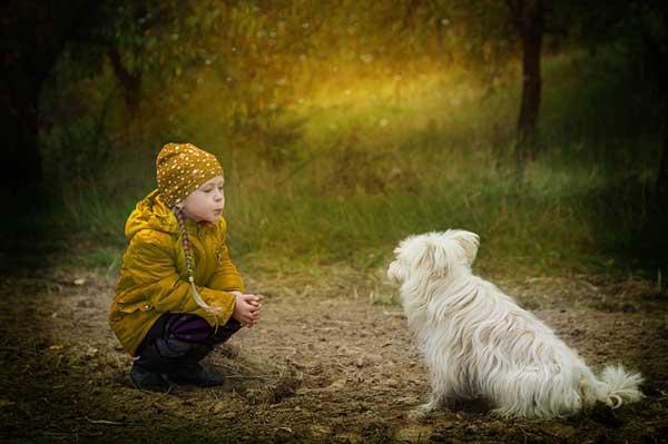 Ljubaznost prema životinjama