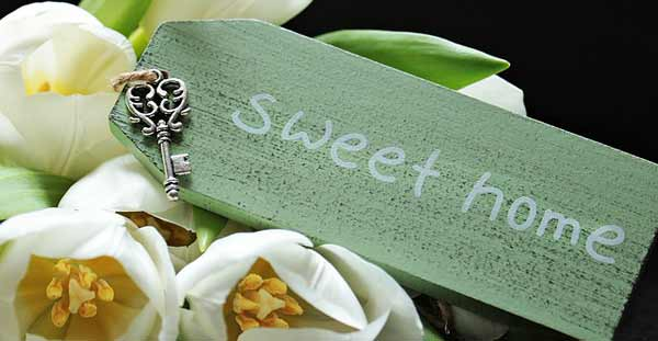 Reiki sweet home